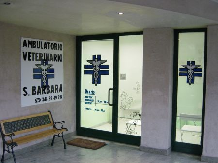 ambulatorio veterinario santa barbara