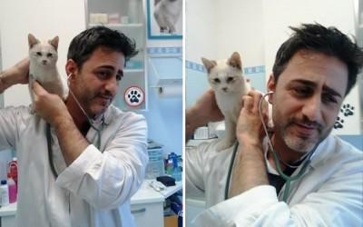 Dott. Oscar Pellegrini e micio