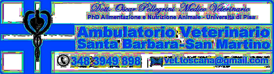 logo1144bis